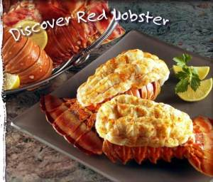 red lobster gift